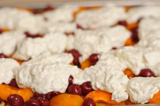 Fruit and Cheese Bars #28